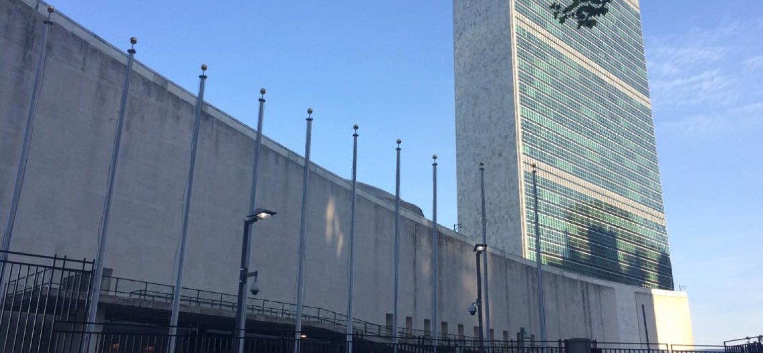 Pirates at the United Nations