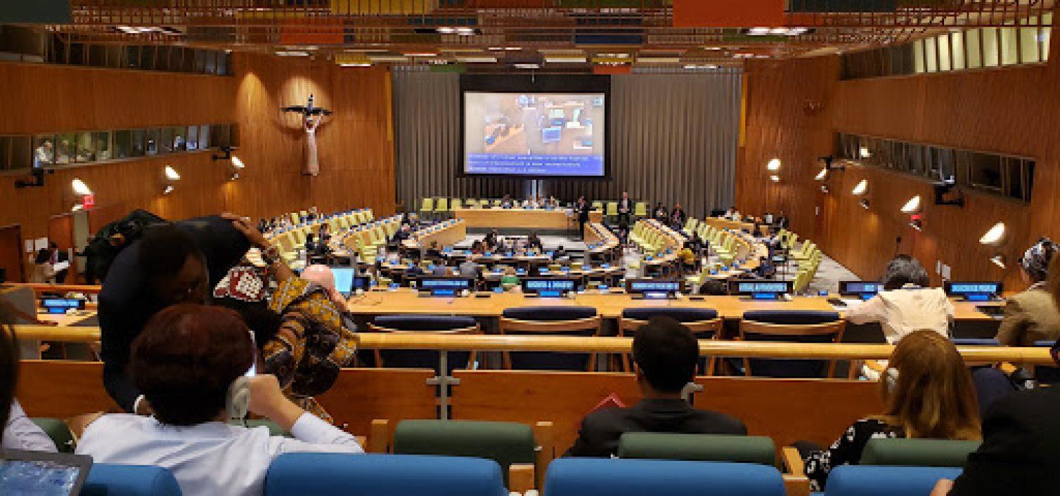 Speech at the 2019 UN ECOSOC High-Level Segment